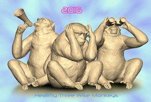 三猿2016.jpg