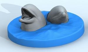 eru-dolphin01.jpeg